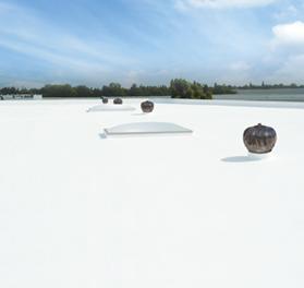 isoflex pu  bg polyurethane waterproofing